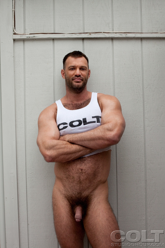 hardcore hairy pictures hardcore porn fucking ass studio huge group star gay sucking bear hairy muscle stuff bottom cage jockstrap masculine aaron pecs colt gruff brenden bears gaydemon