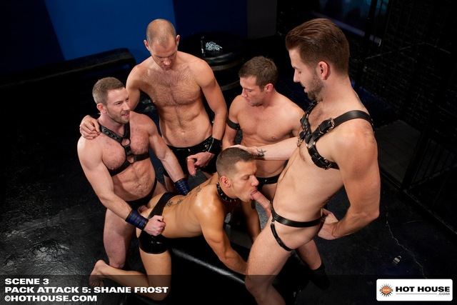 hardcore hairy hardcore porn fucking hot reed group star gangbang gay bear hairy muscular spencer part michaels steel house muscle pack build cole preston masculine scruffy shay attack shane frost beefy trevor knight streets bears