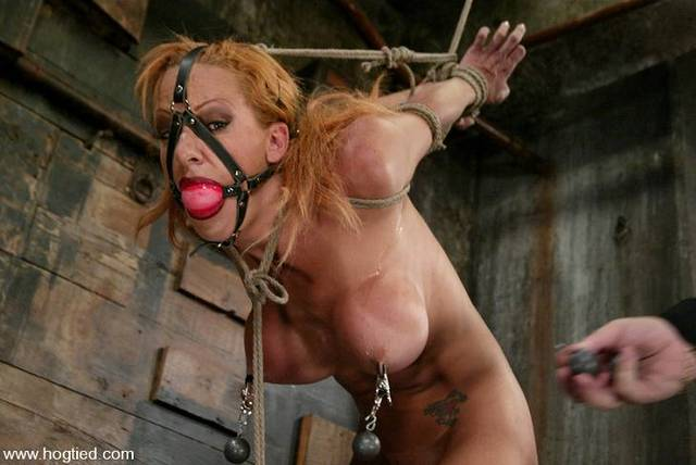 shannon kelly hardcore girls hot pics tied gagged fce