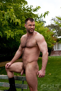 Hardcore Picture Of Porn Star aaron cage gay hardcore porn star muscle bear hairy huge pecs bottom ass jockstrap colt studio group gruff stuff brenden fucking sucking masculine woof alert