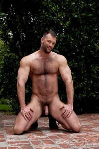 Porn Star Group Hardcore media porn star ass hardcore muscle bear hairy huge pecs bottom
