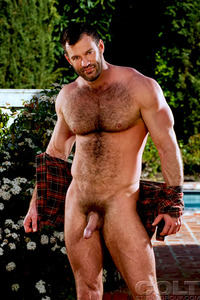 Porn Star Group Hardcore aaron cage gay hardcore porn star muscle bear hairy huge pecs bottom ass jockstrap colt studio group gruff stuff brenden fucking sucking masculine time had anal intercourse was when they were holiday