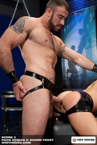 Porn Star Group Hardcore shay michaels pack attack shane frost gay porn star hot house muscle bear beefy build hairy muscular scruffy masculine spencer reed trevor knight cole streets preston steel fucking gangbang group hardcore search