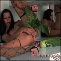 Hardcore Anal Toys queensnake veggies foot fetish analtoys fruit stuffing hardcore fisting release april