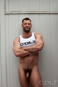 Hardcore Hairy Pictures aaron cage gay hardcore porn star muscle bear hairy huge pecs bottom ass jockstrap colt studio group gruff stuff brenden fucking sucking masculine bears gaydemon