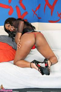 Ms Panther Hardcore hosted tgp panther pics busty ebony babe fucks corset gal